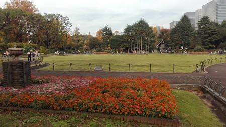 日比谷公園 2016/11/20