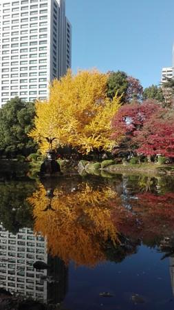 紅葉の鏡@日比谷公園