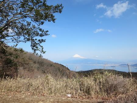 駿河湾と富士山