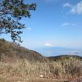 写真: 駿河湾と富士山