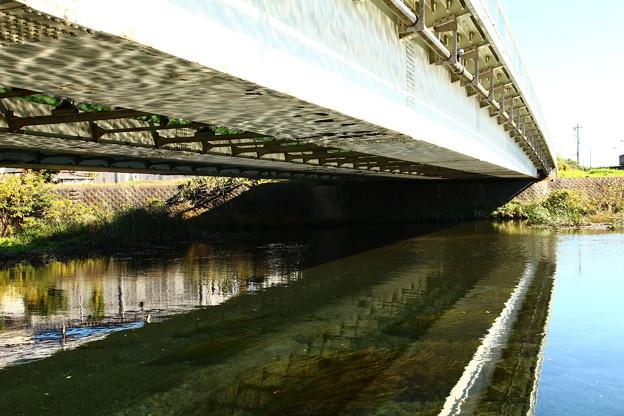 河川敷の橋裏