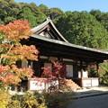 Photos: 円成寺本堂