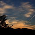 夕空に飛行機雲