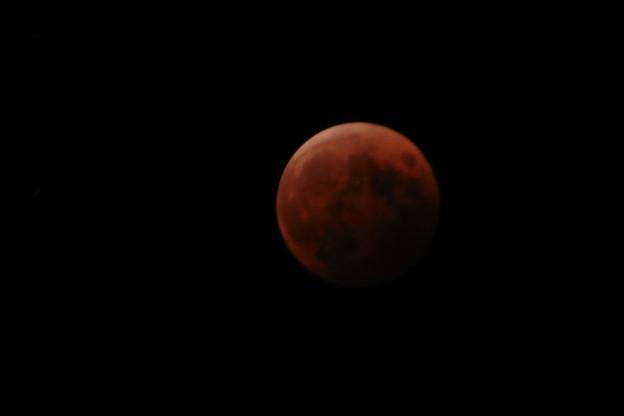 あらら赤い月が…