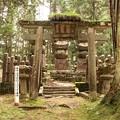 Photos: 30-和歌山 高野山 薩摩 島津家墓所-20040712-069