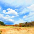 紅葉のある風景 7