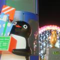 Photos: 待ち伏せ♪