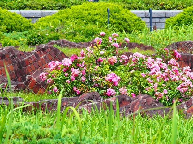 横浜の遺跡 (5)