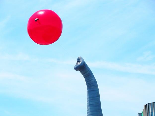 Photos: 象の鼻が (3)