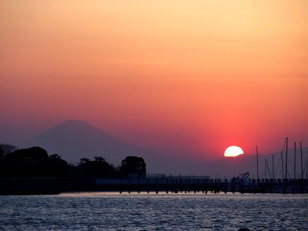 Photos: 蔵出し夕陽富士
