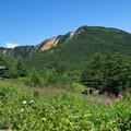 写真: 高原へ♪