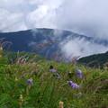 写真: 雲上の丘