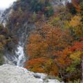 写真: 高瀬ダム -2