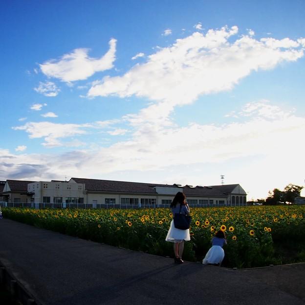 Photos: ふたり+