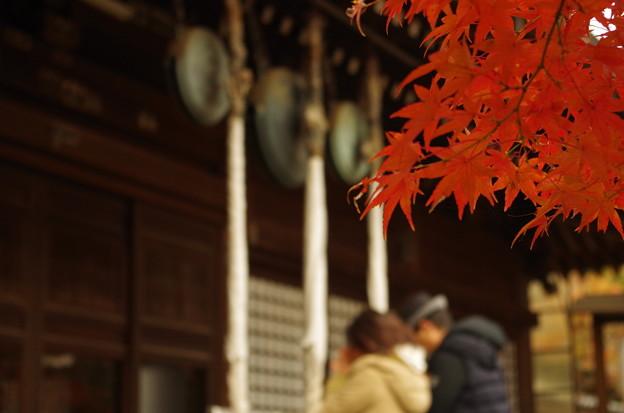 本土寺 (2)