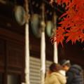 写真: 本土寺 (2)