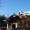 写真: 亀戸天神社 (8)