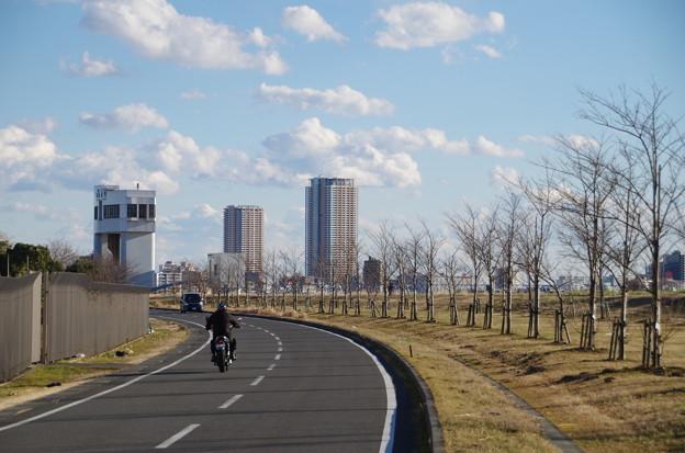 写真: 河原 (2)