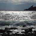 伊豆ー光る海