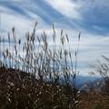 Photos: 高原は秋の気配