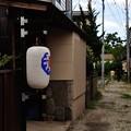 Photos: 土崎港曳山まつり 13