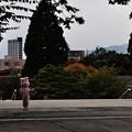Photos: 盛岡八幡宮七五三 09