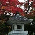 Photos: 盛岡八幡宮七五三 12