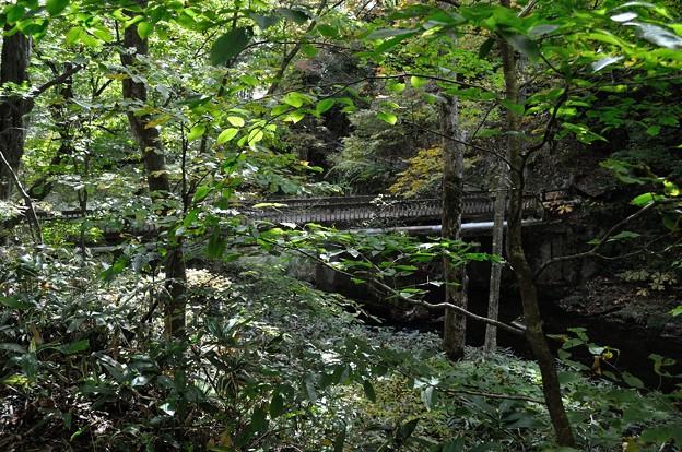 花巻温泉 釜淵の滝・紅葉橋 04