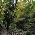 花巻温泉 釜淵の滝・紅葉橋 05