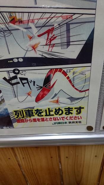 男鹿線 2017-01-14_21