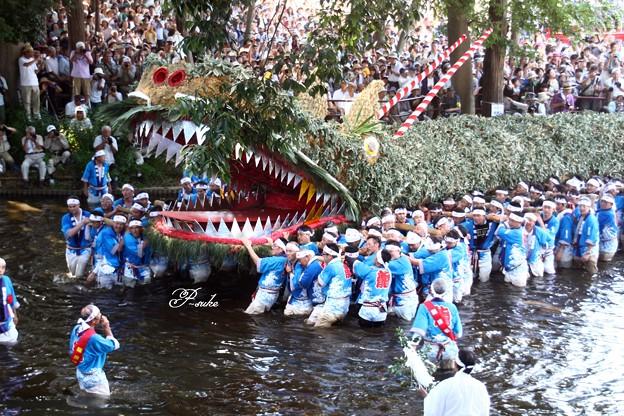 雨乞い祭り - Trang chia sẻ ảnh...