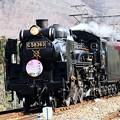 Photos: steam locomotive