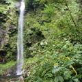 阿弥陀ヶの滝20