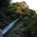 養老の滝5