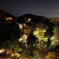 清水寺夜6