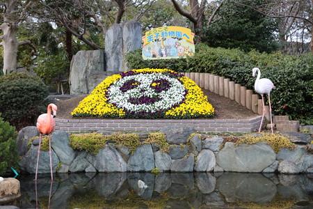 王子動物園18