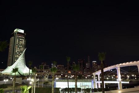 神戸夜景6