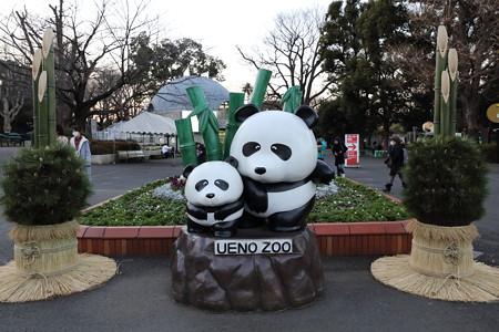 上野動物園18