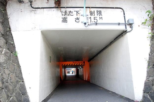 平井ロケ_5092