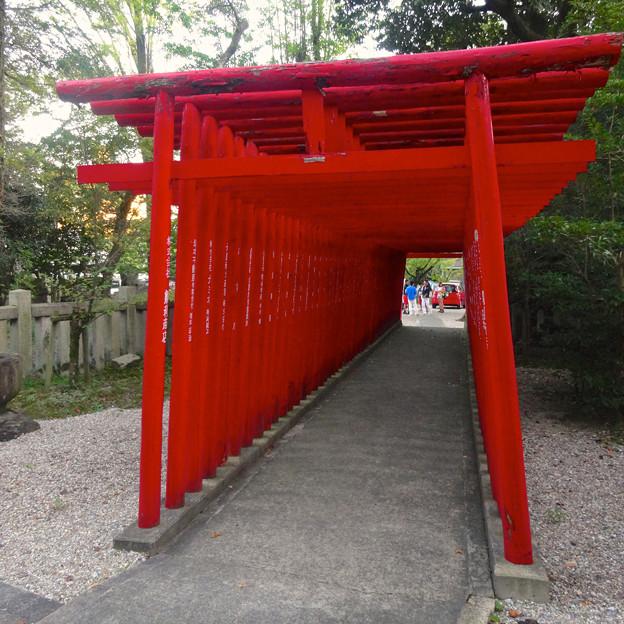せともの祭 2014:深川神社 - 31