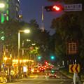 写真: 夜の久屋大通、遠くに名古屋テレビ塔 - 4