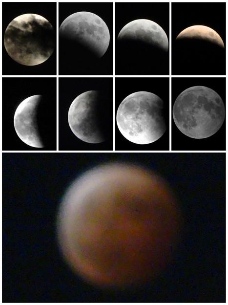 皆既月食(2014/10/8):まとめ