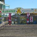 写真: 休園だったの閑散としていた、東山動植物園正門前 - 4