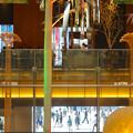先日オープンしたばかりのJPタワー「KITTE名古屋」 - 41:2階から見た、1階吹き抜けの金シャチベンチの頂点部