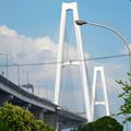 写真: 金城ふ頭から見上げた名港トリトン「名港中央大橋」 - 5