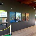 写真: 大高緑地に「ディノアドベンチャー名古屋」がプレオープン! - 4:コース入口にある施設