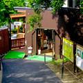 写真: 大高緑地に「ディノアドベンチャー名古屋」がプレオープン! - 88:コース出口