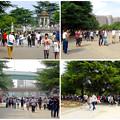 写真: 「ポケモンGo」をやりに来た人たちでごった返す鶴舞公園 - 65