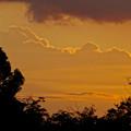 写真: 落合公園:遠くの方に見えた、夏らしい雲 - 2