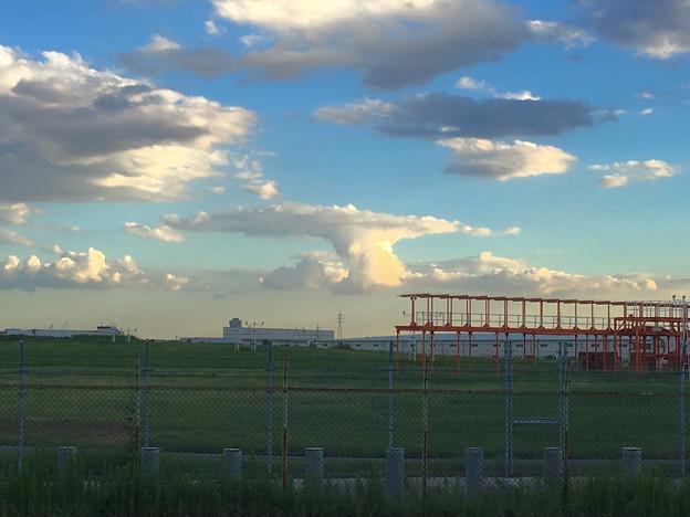 遠くに見えたキノコ型の雲(小針公園) - 1